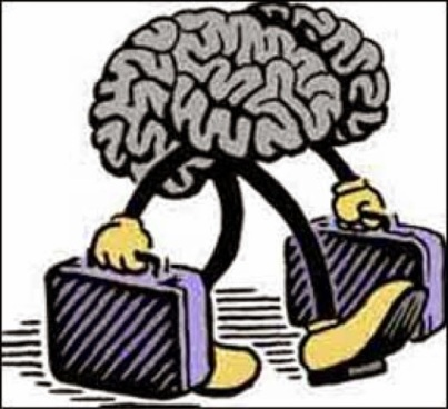 fuga de cerebro